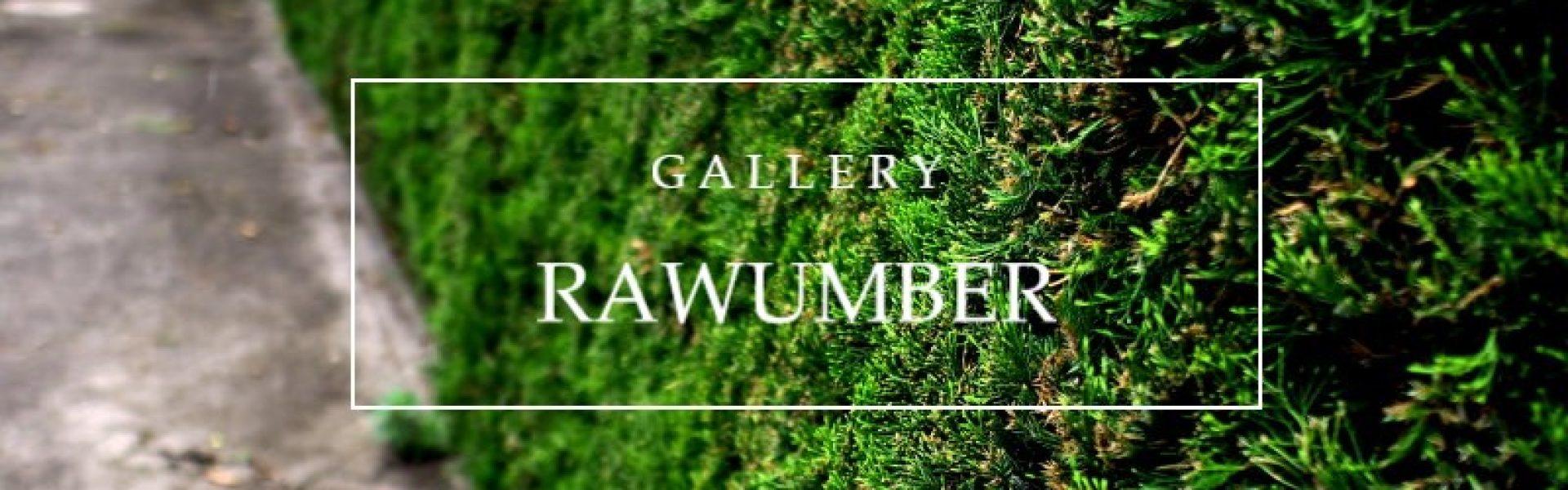 GALLERY-RAWUMBER
